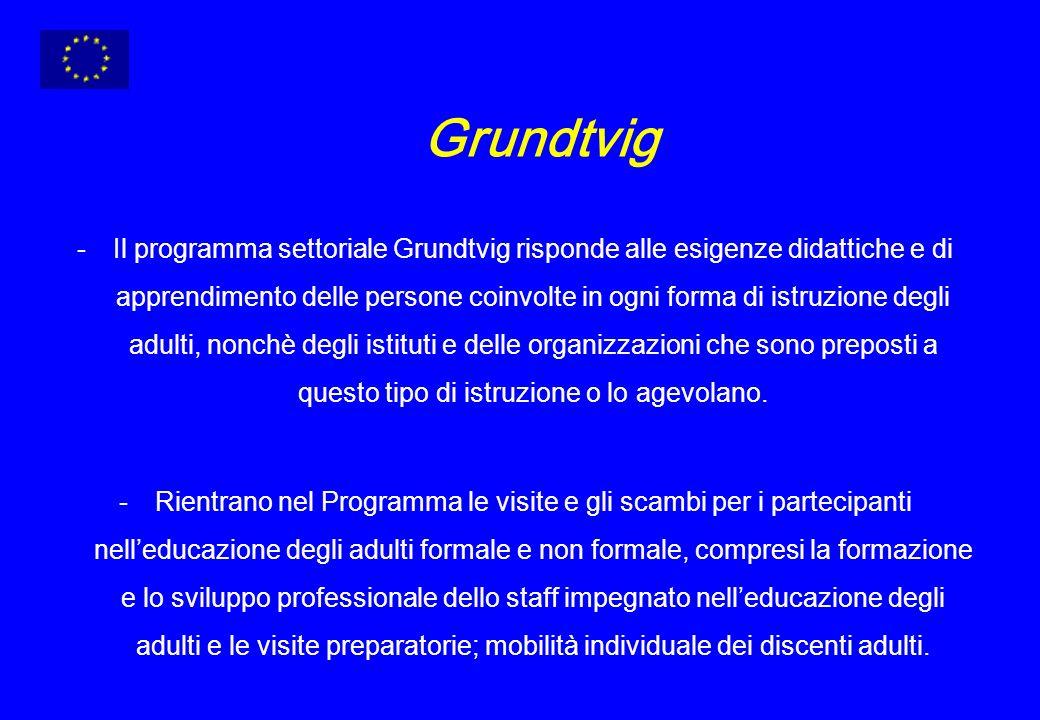 Grundtvig -Il programma settoriale Grundtvig risponde alle esigenze didattiche e di apprendimento delle persone coinvolte in ogni forma di istruzione degli adulti, nonchè degli istituti e delle organizzazioni che sono preposti a questo tipo di istruzione o lo agevolano.