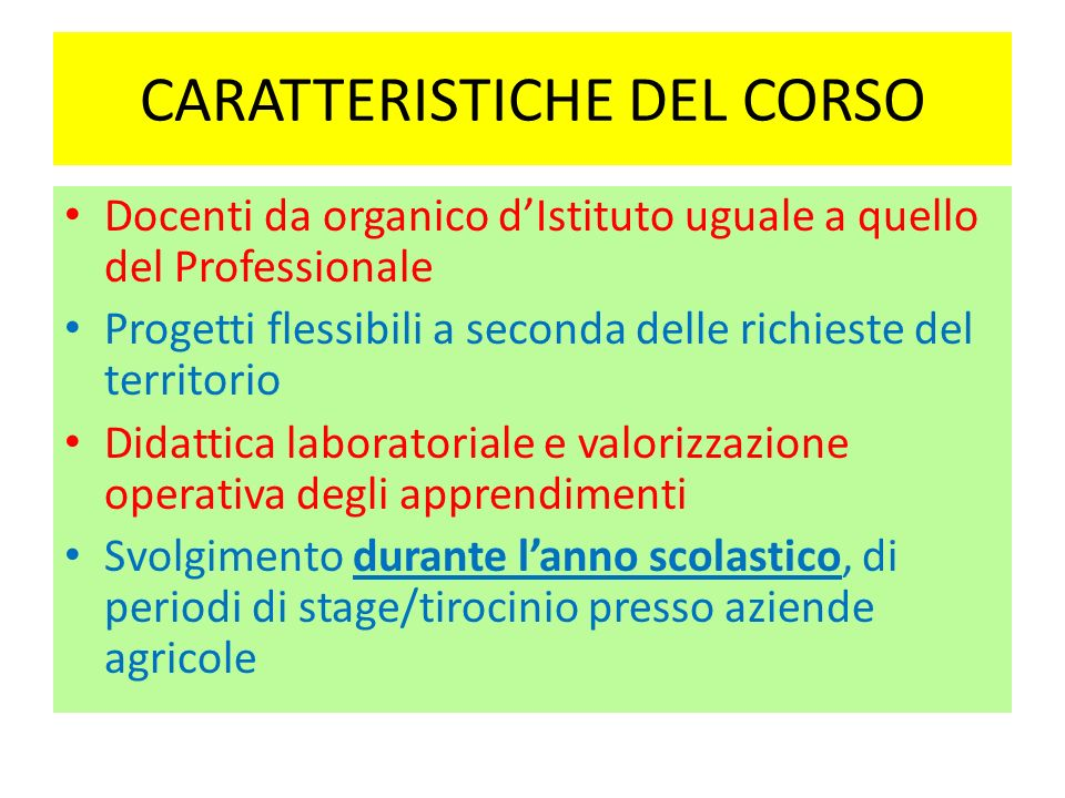 CARATTERISTICHE DEL CORSO Docenti da organico dIstituto uguale a quello del Professionale Progetti flessibili a seconda delle richieste del territorio