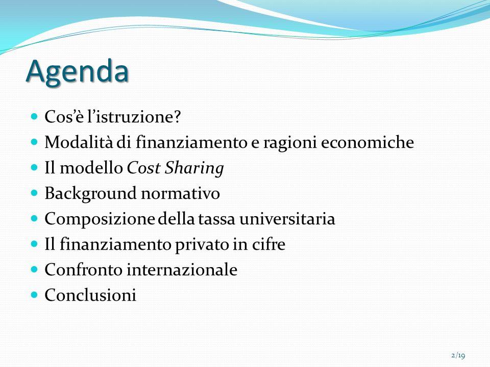 Agenda Cosè listruzione? Modalità di finanziamento e ragioni economiche Il modello Cost Sharing Background normativo Composizione della tassa universi