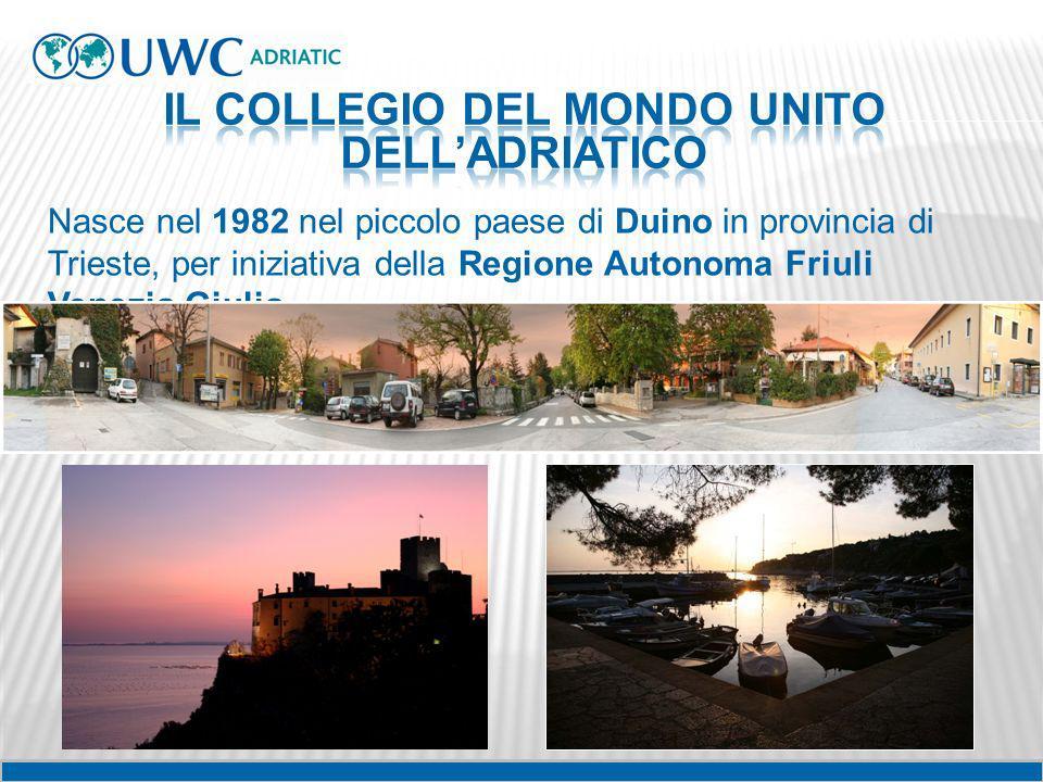 Nasce nel 1982 nel piccolo paese di Duino in provincia di Trieste, per iniziativa della Regione Autonoma Friuli Venezia Giulia