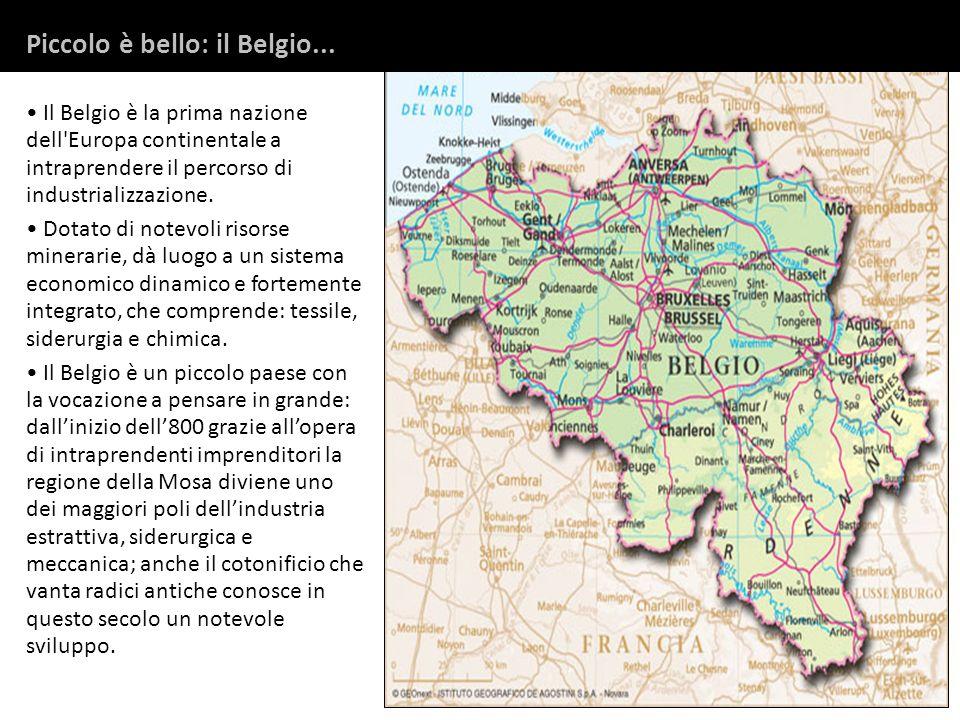 Il Belgio è la prima nazione dell'Europa continentale a intraprendere il percorso di industrializzazione. Dotato di notevoli risorse minerarie, dà luo