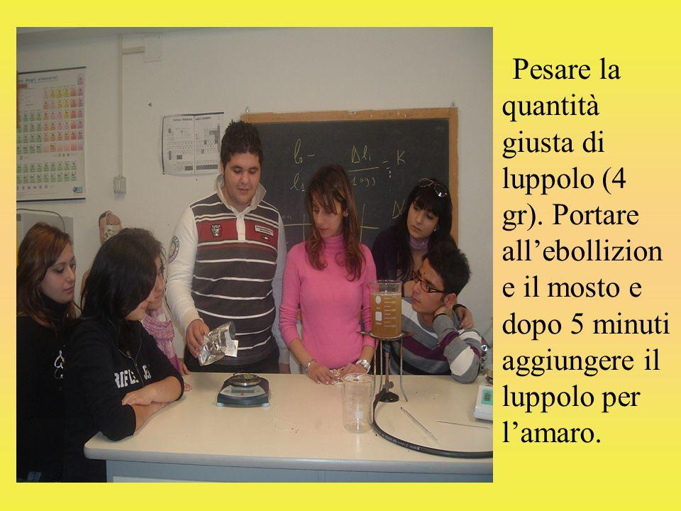 Pesare la quantità giusta di luppolo (4 gr).