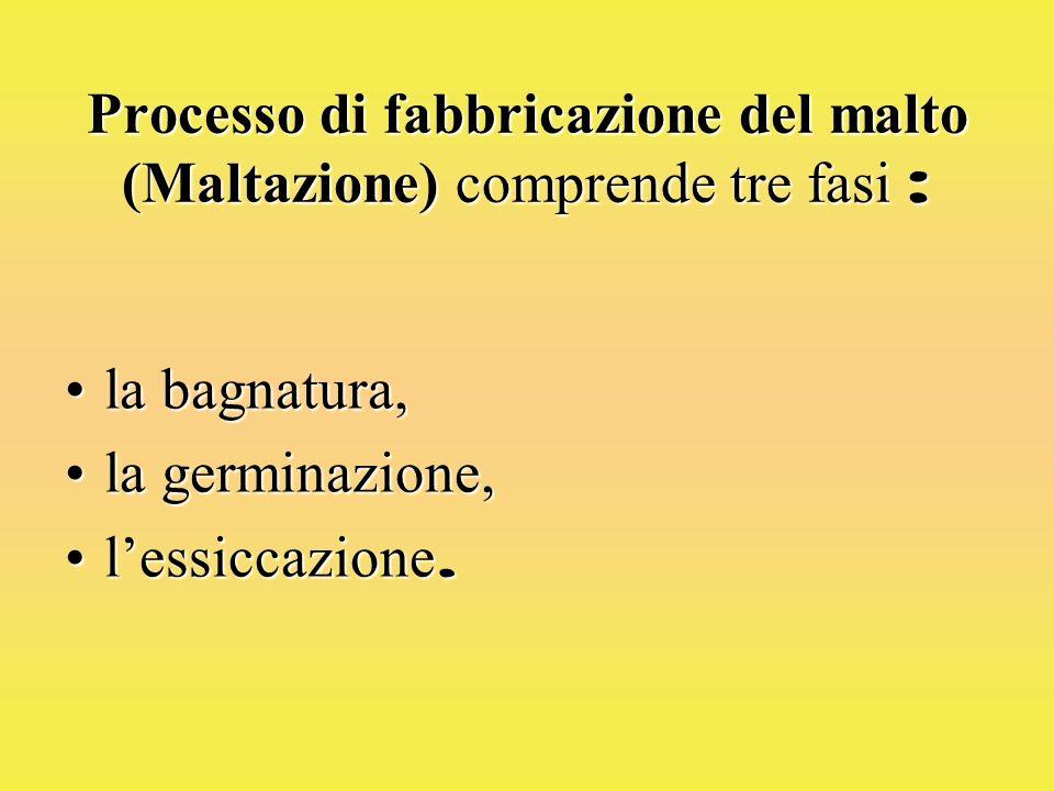 Processo di fabbricazione del malto (Maltazione) comprende tre fasi : la bagnatura,la bagnatura, la germinazione,la germinazione, lessiccazione.lessiccazione.