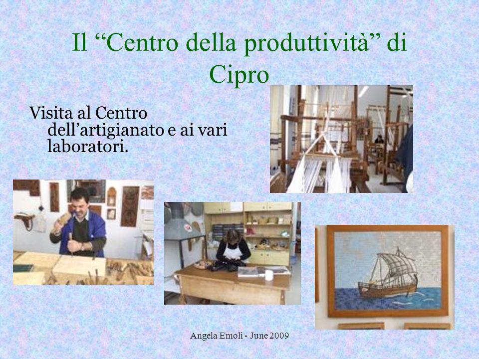 Angela Emoli - June 2009 Il Centro della produttività di Cipro Visita al Centro dellartigianato e ai vari laboratori.