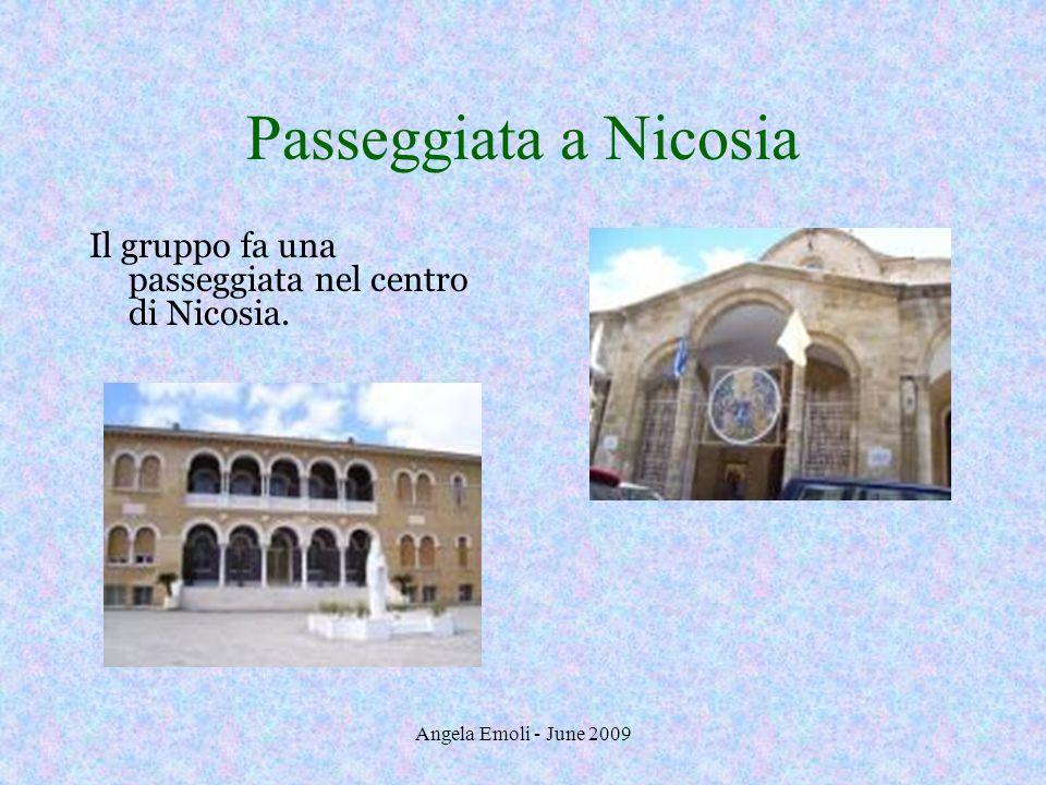 Angela Emoli - June 2009 Istituto Pedagogico Visita allIstituto Pedagogico di Cipro.