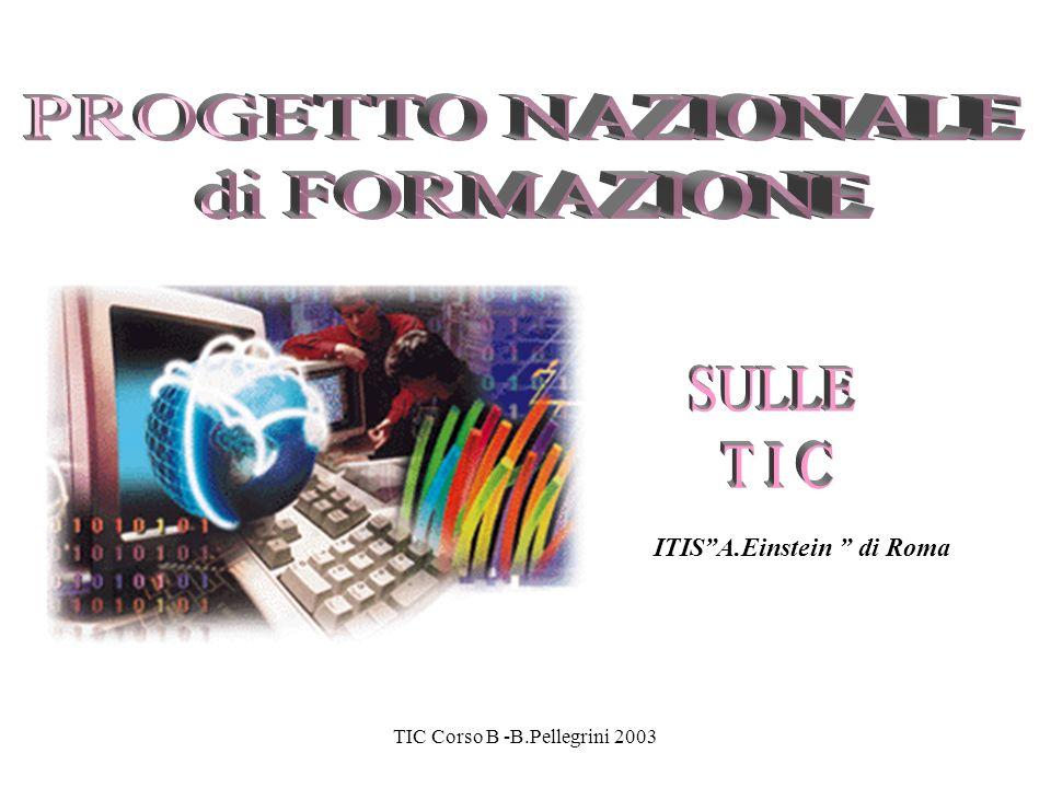 TIC Corso B -B.Pellegrini 2003 Calendario – 1 GiornoProgramma previstoTutor 19-3-03 26-3-03 M1 - Innovazione nella scuola e Tecnologie didattiche Brunella Pellegrini, Marco Paletta, Marco Ciancaglini 2-4-03 9-4-03 M2 - Processi di apprendimento- insegnamento e T.D.