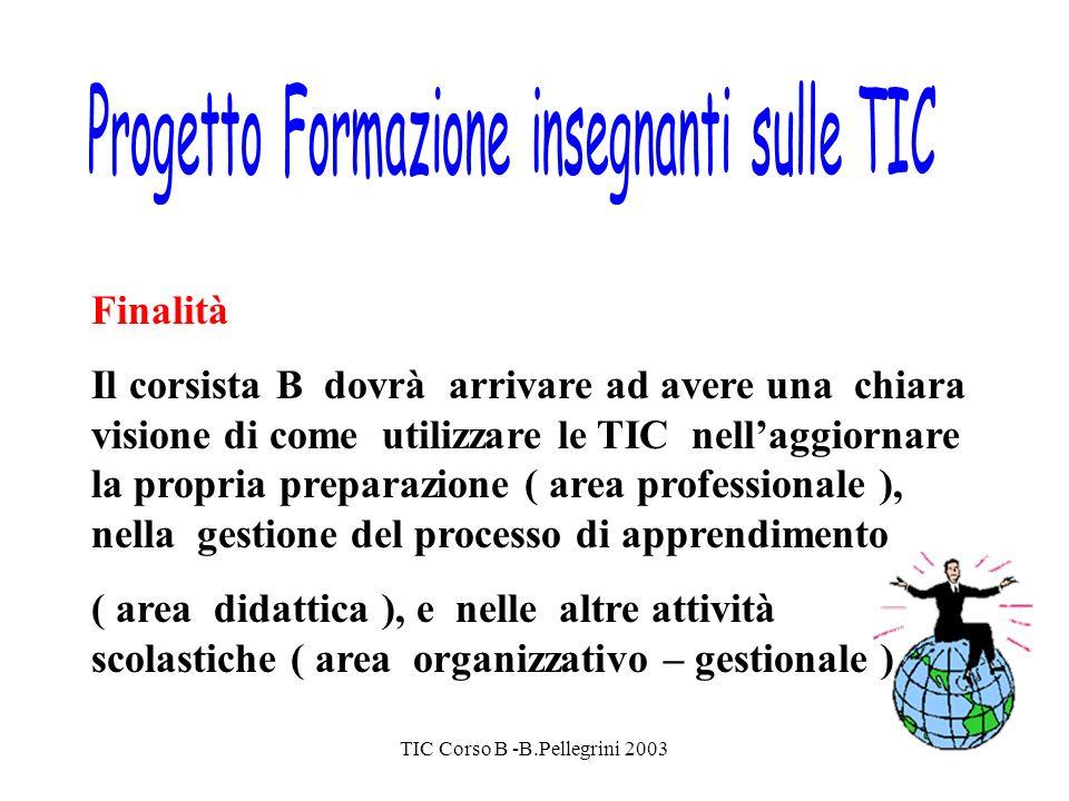 TIC Corso B -B.Pellegrini 2003 Finalità Il corsista B dovrà arrivare ad avere una chiara visione di come utilizzare le TIC nellaggiornare la propria preparazione ( area professionale ), nella gestione del processo di apprendimento ( area didattica ), e nelle altre attività scolastiche ( area organizzativo – gestionale )