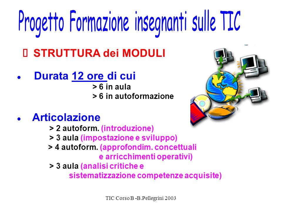 TIC Corso B -B.Pellegrini 2003 STRUTTURA dei MODULI Durata 12 ore di cui > 6 in aula > 6 in autoformazione Articolazione > 2 autoform.