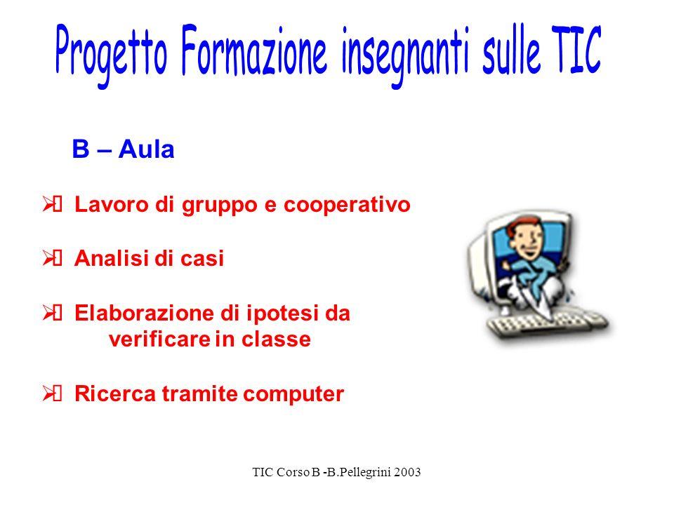 TIC Corso B -B.Pellegrini 2003 B – Aula Lavoro di gruppo e cooperativo Analisi di casi Elaborazione di ipotesi da verificare in classe Ricerca tramite computer