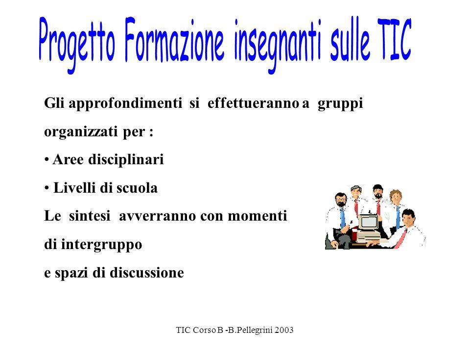TIC Corso B -B.Pellegrini 2003 Gli approfondimenti si effettueranno a gruppi organizzati per : Aree disciplinari Livelli di scuola Le sintesi avverranno con momenti di intergruppo e spazi di discussione