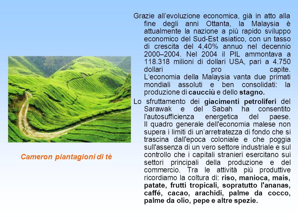 Cameron piantagioni di tè Grazie allevoluzione economica, già in atto alla fine degli anni Ottanta, la Malaysia è attualmente la nazione a più rapido