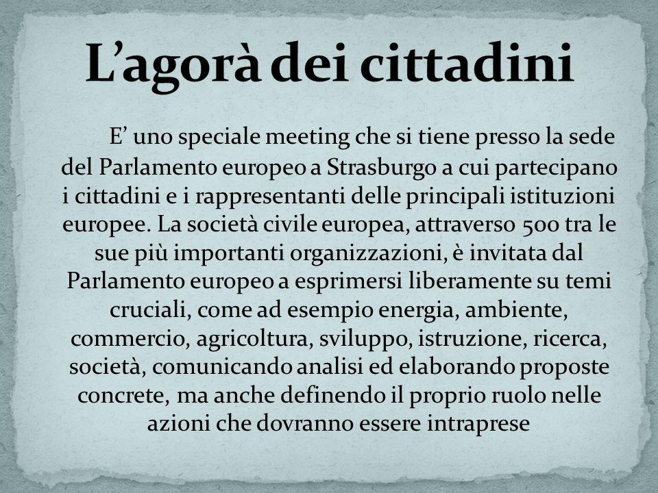 E uno speciale meeting che si tiene presso la sede del Parlamento europeo a Strasburgo a cui partecipano i cittadini e i rappresentanti delle principa