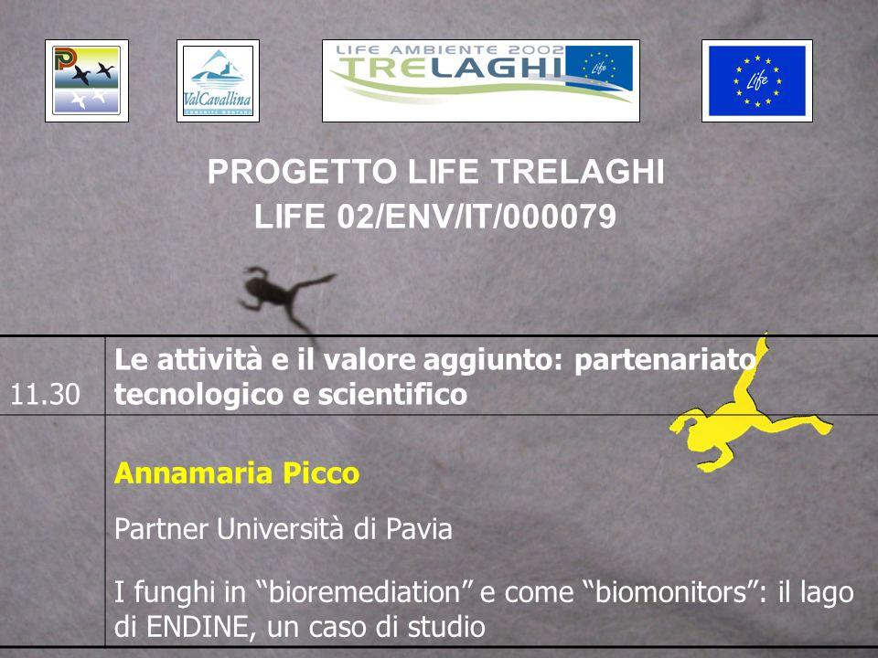 11.30 Le attività e il valore aggiunto: partenariato tecnologico e scientifico Claudio Comoglio Partner Politecnico di Torino EMAS ed aree protette: P.L.I.S.