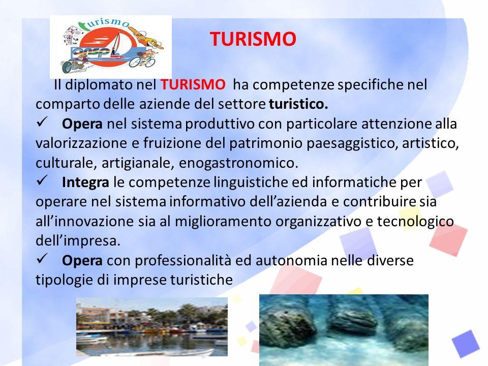 TURISMO Il diplomato nel TURISMO ha competenze specifiche nel comparto delle aziende del settore turistico.