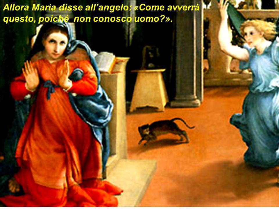Allora Maria disse allangelo: «Come avverrà questo, poiché non conosco uomo?».
