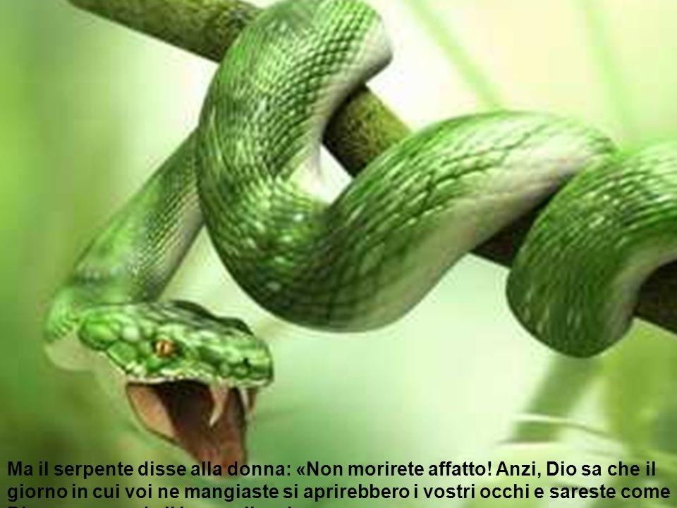 Ma il serpente disse alla donna: «Non morirete affatto! Anzi, Dio sa che il giorno in cui voi ne mangiaste si aprirebbero i vostri occhi e sareste com