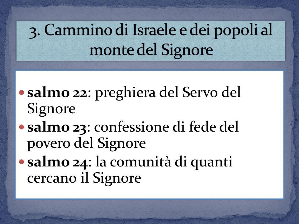 salmo 22: preghiera del Servo del Signore salmo 23: confessione di fede del povero del Signore salmo 24: la comunità di quanti cercano il Signore