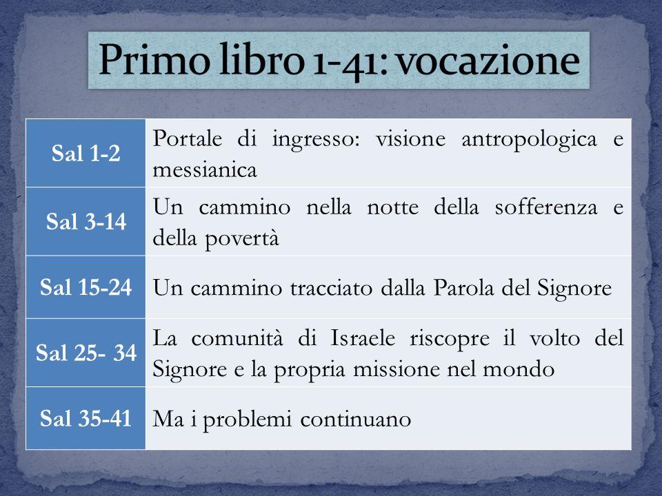 Sal 1-2 Portale di ingresso: visione antropologica e messianica Sal 3-14 Un cammino nella notte della sofferenza e della povertà Sal 15-24Un cammino t