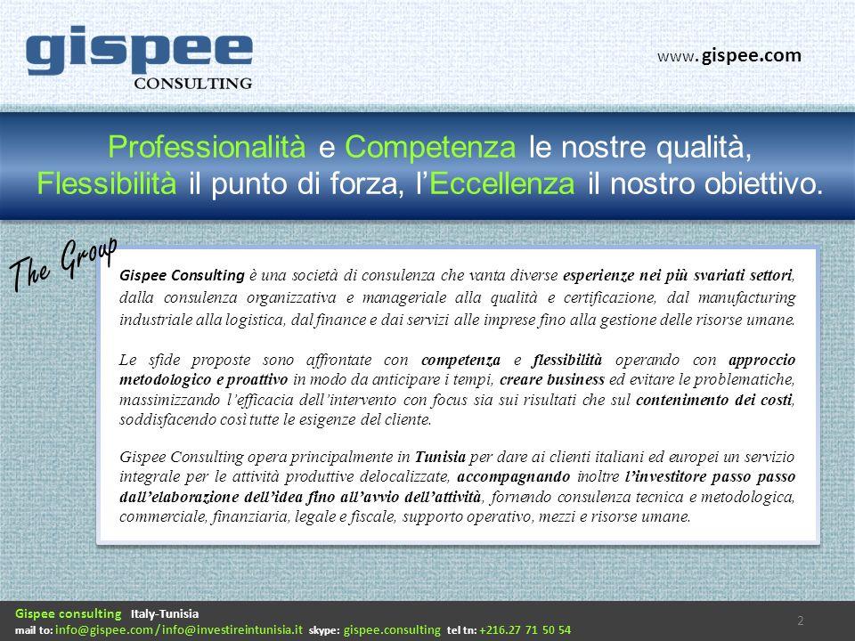Professionalità e Competenza le nostre qualità, Flessibilità il punto di forza, lEccellenza il nostro obiettivo. Gispee Consulting è una società di co