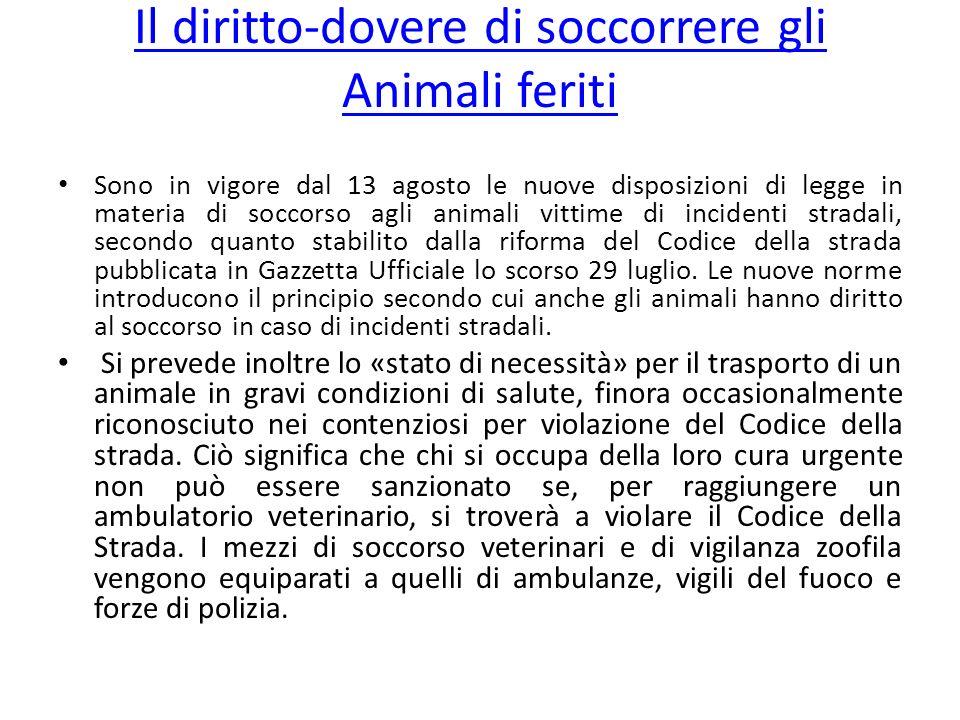 Il diritto-dovere di soccorrere gli Animali feriti Sono in vigore dal 13 agosto le nuove disposizioni di legge in materia di soccorso agli animali vit