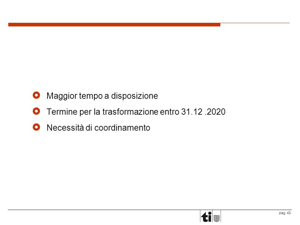 pag. 43 Maggior tempo a disposizione Termine per la trasformazione entro 31.12.2020 Necessità di coordinamento