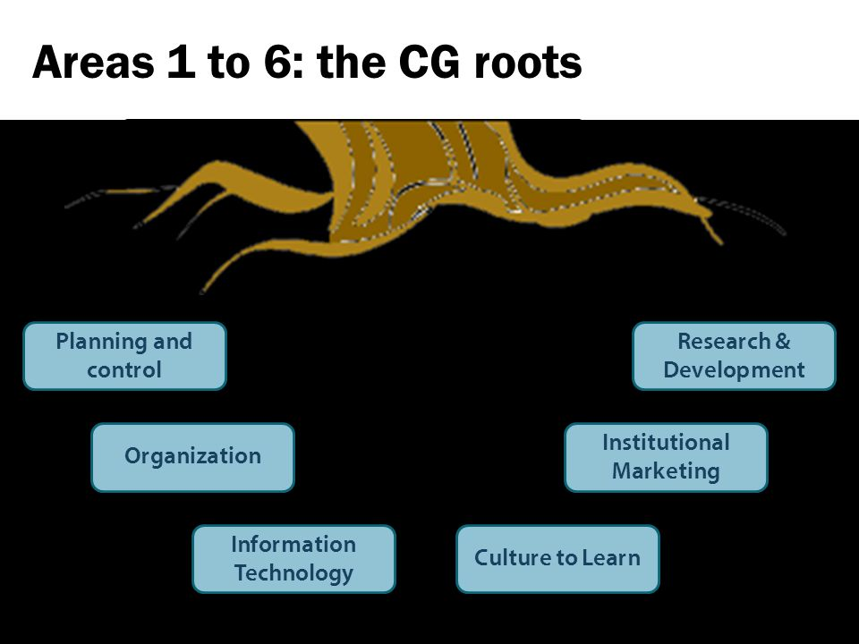 Areas 1 to 6: the CG roots Planning and control Organization Culture to Learn Information Technology Research & Development Institutional Marketing