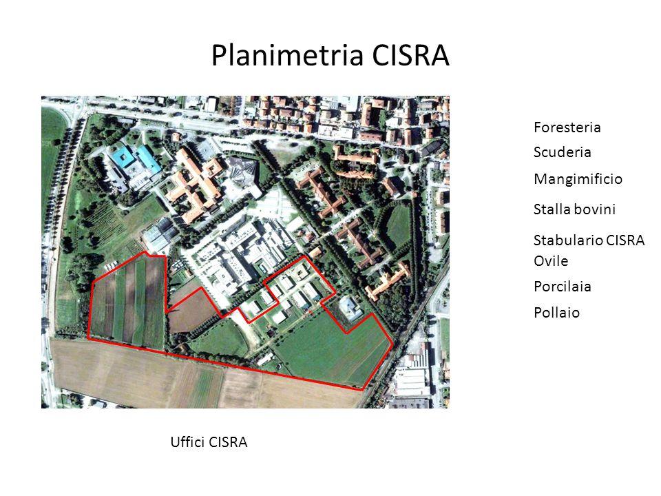 Planimetria CISRA Uffici CISRA Foresteria Scuderia Mangimificio Stalla bovini Stabulario CISRA Ovile Porcilaia Pollaio