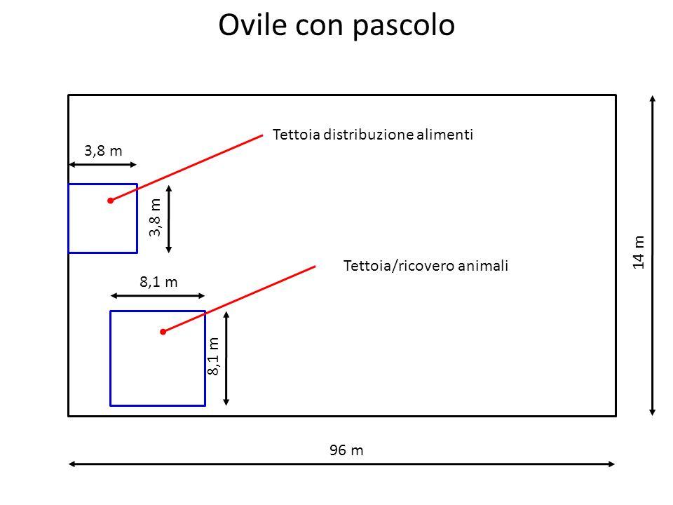 Ovile con pascolo 96 m 14 m 3,8 m 8,1 m Tettoia distribuzione alimenti Tettoia/ricovero animali
