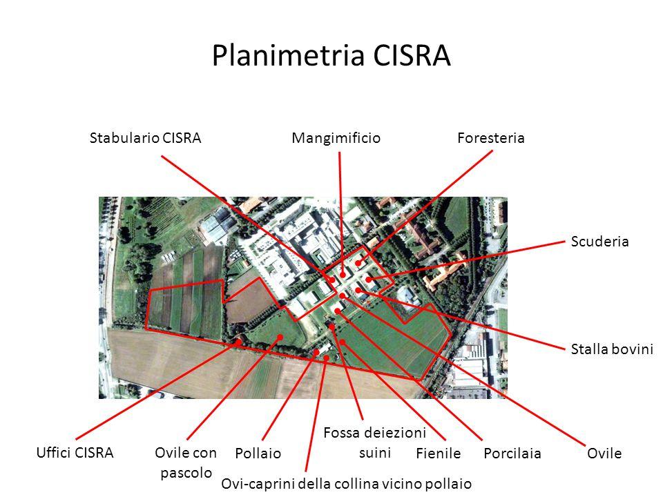 Foresteria Camera 1 Camera 2 Camera 3 Camera 4 Cucina Spogliatoi Ufficio 26 m 24 m