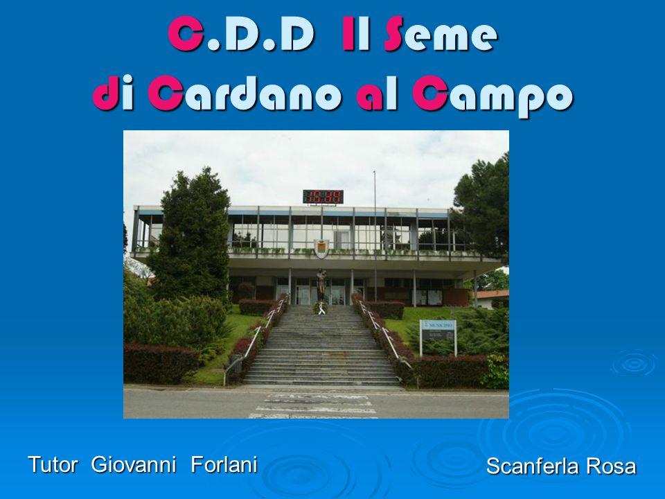C.D.D Il Seme di Cardano al Campo Scanferla Rosa Tutor Giovanni Forlani