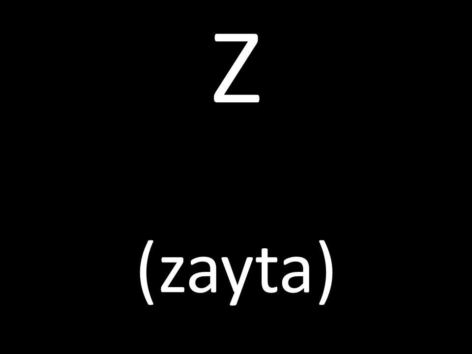 Z (zayta)
