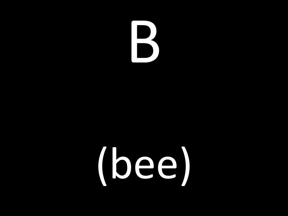 B (bee)