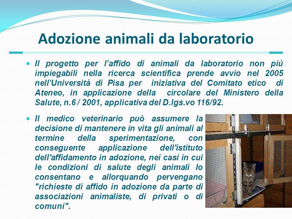Adozione animali da laboratorio Il progetto per laffido di animali da laboratorio non più impiegabili nella ricerca scientifica prende avvio nel 2005