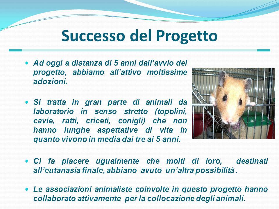 Successo del Progetto Ad oggi a distanza di 5 anni dallavvio del progetto, abbiamo allattivo moltissime adozioni. Le associazioni animaliste coinvolte