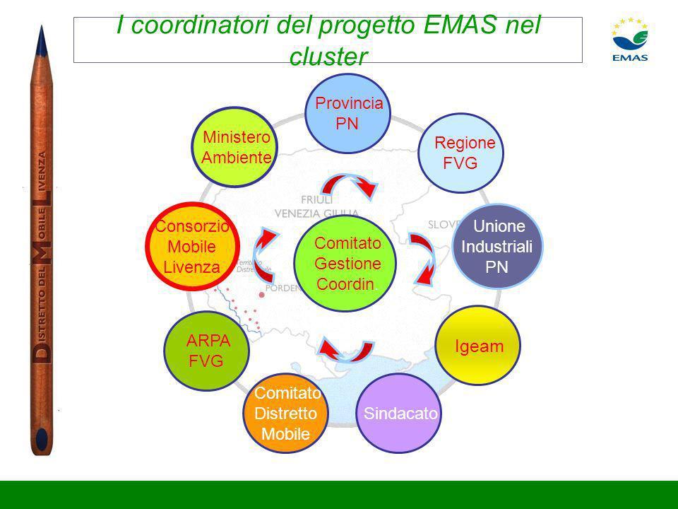 I coordinatori del progetto EMAS nel cluster Provincia PN Sindacato Comitato Distretto Mobile ARPA FVG Regione FVG Ministero Ambiente Igeam Consorzio