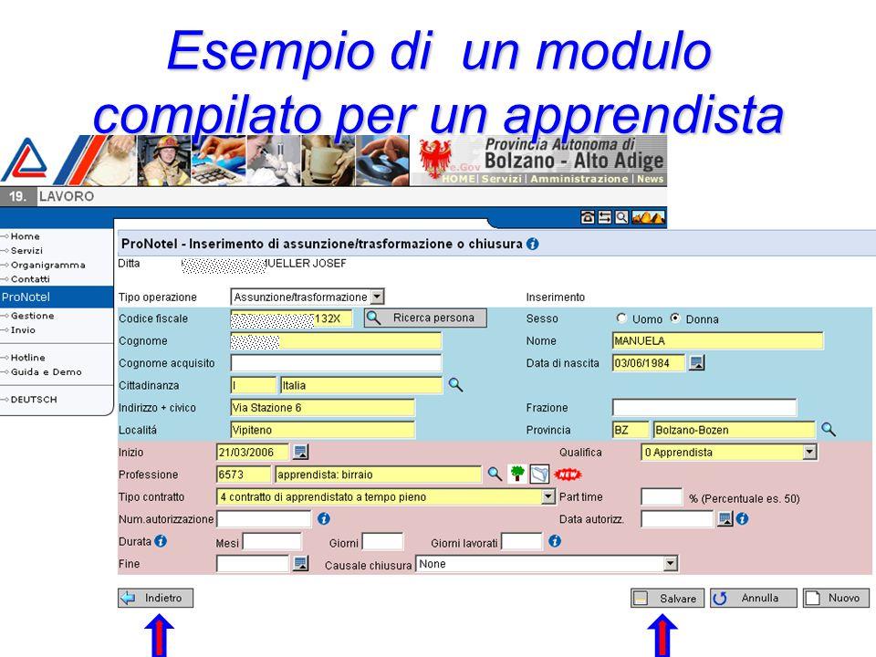 Esempio di un modulo compilato per un apprendista
