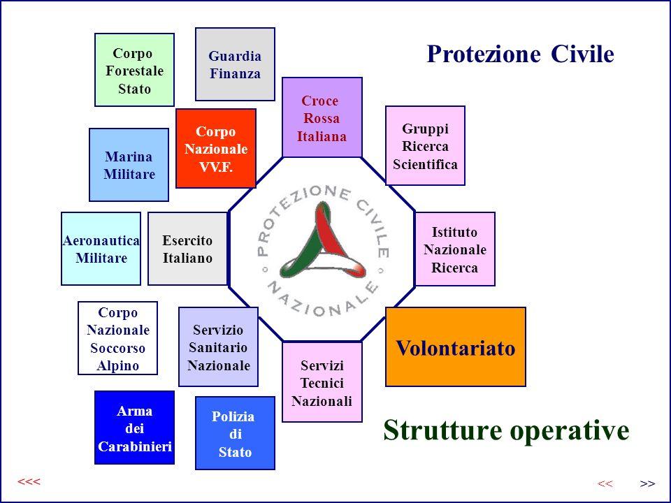 Strutture operative Croce Rossa Italiana Istituto Nazionale Ricerca Servizi Tecnici Nazionali Esercito Italiano Gruppi Ricerca Scientifica Volontariat