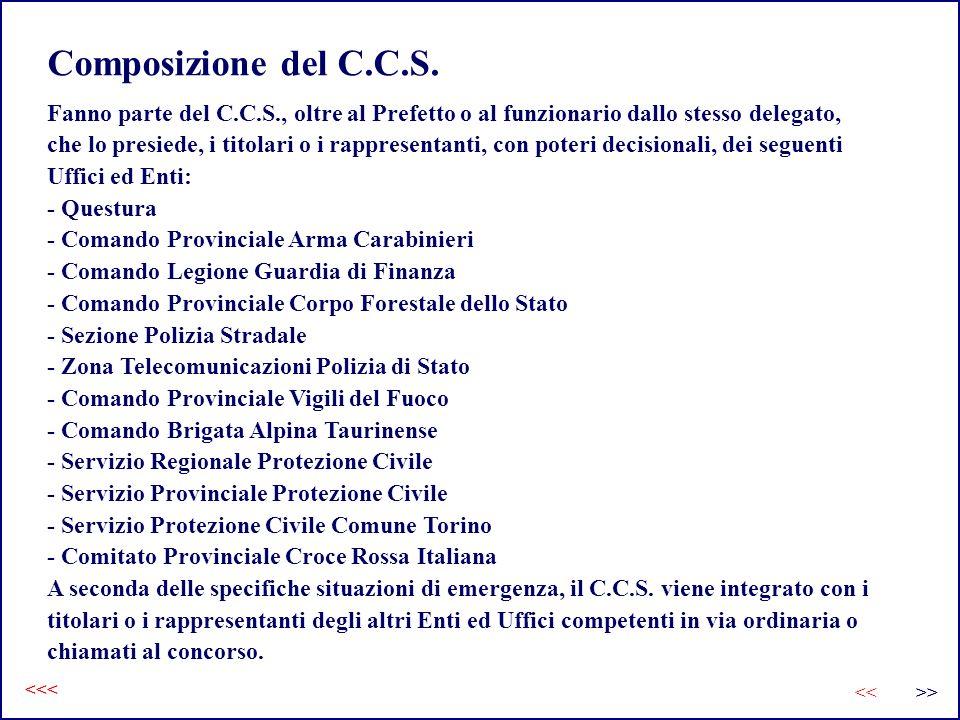 Composizione del C.C.S. Fanno parte del C.C.S., oltre al Prefetto o al funzionario dallo stesso delegato, che lo presiede, i titolari o i rappresentan