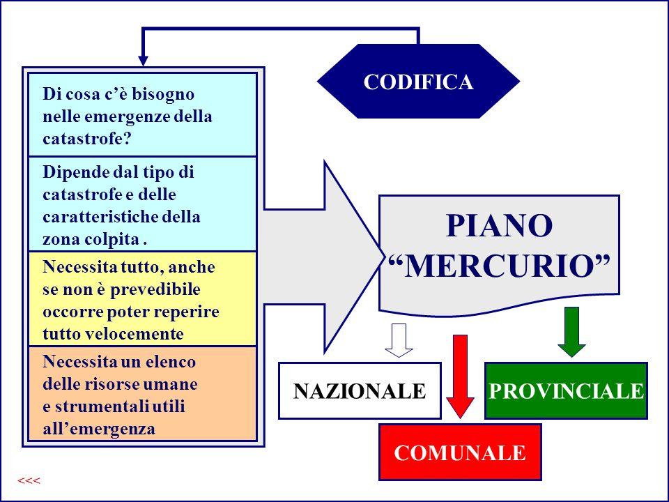 PIANO Mercurio CODIFICA PIANO MERCURIO Di cosa cè bisogno nelle emergenze della catastrofe? Dipende dal tipo di catastrofe e delle caratteristiche del