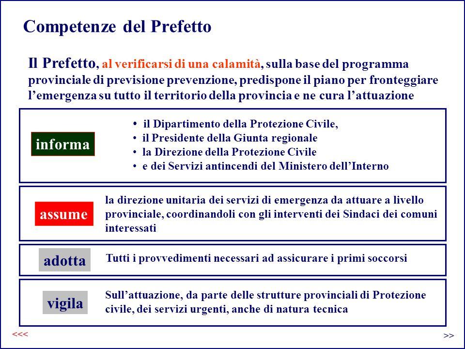 Competenze del Prefetto Il Prefetto, al verificarsi di una calamità, sulla base del programma provinciale di previsione prevenzione, predispone il pia