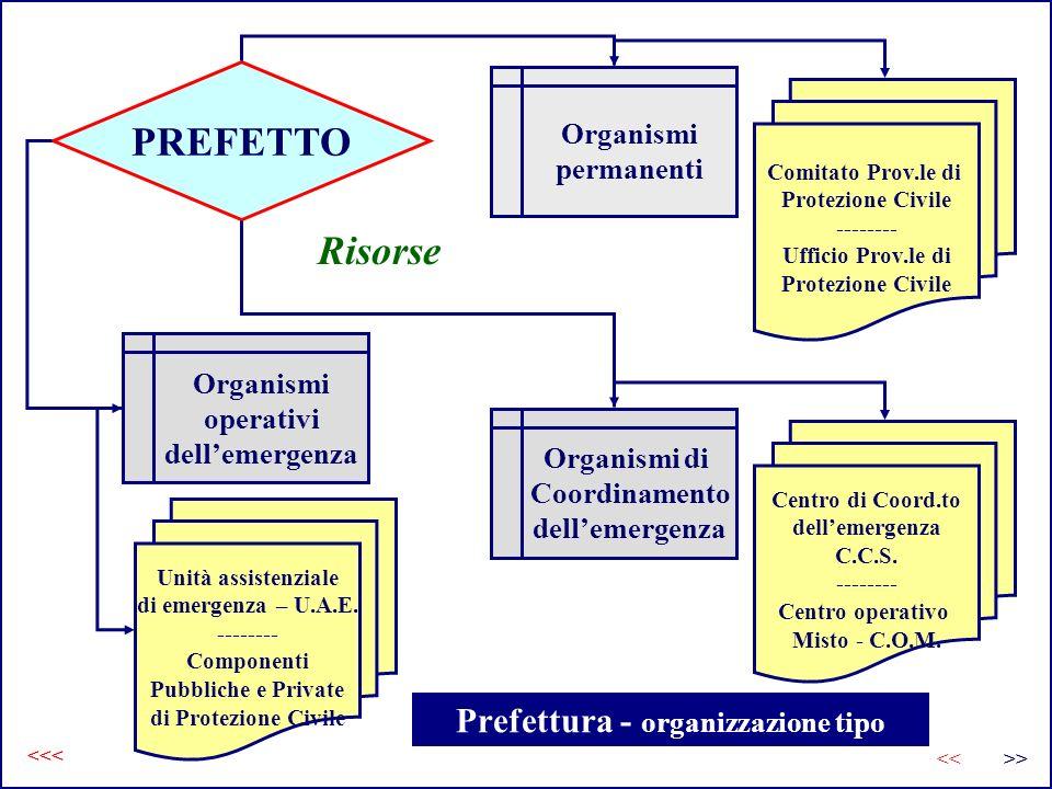 Prefettura - organizzazione tipo PREFETTO Organismi permanenti Organismi operativi dellemergenza Comitato Prov.le di Protezione Civile -------- Uffici