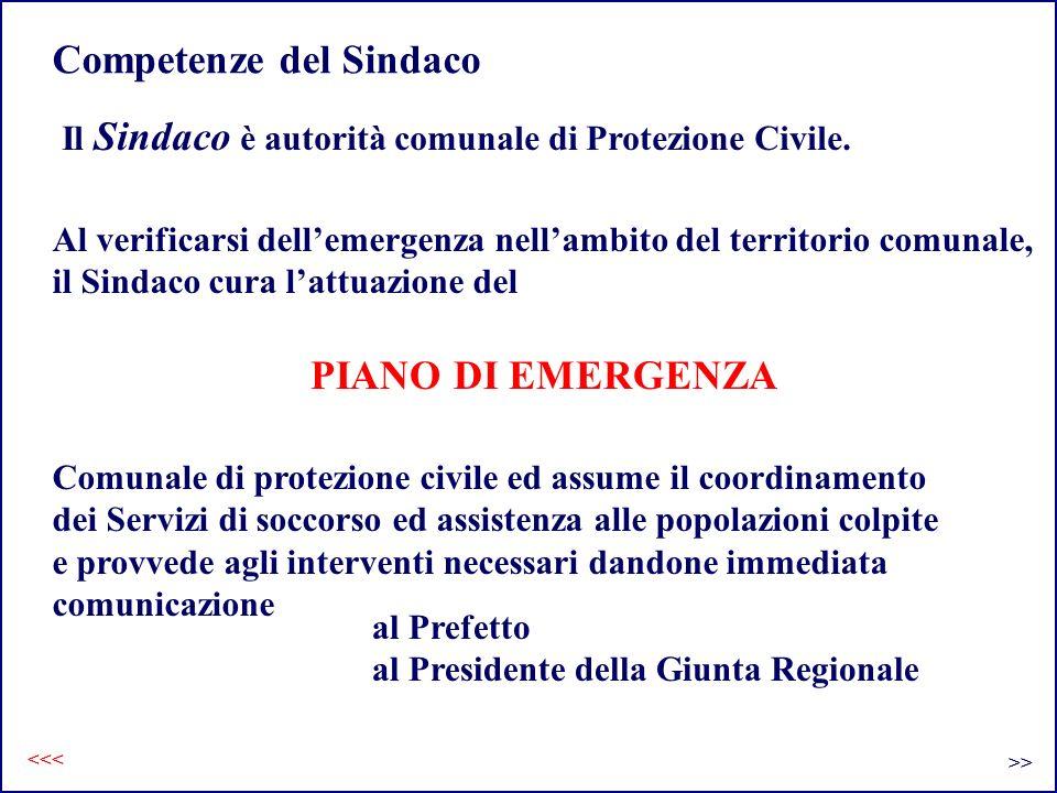 Competenze del Sindaco Il Sindaco è autorità comunale di Protezione Civile. Al verificarsi dellemergenza nellambito del territorio comunale, il Sindac
