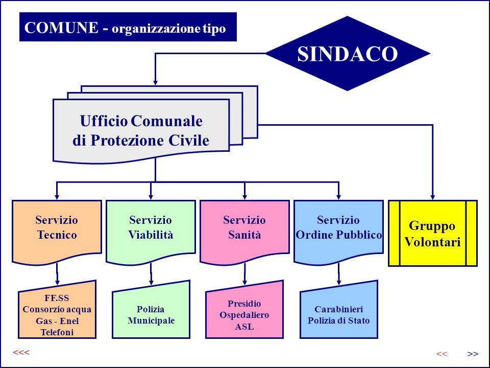 COMUNE - organizzazione tipo <<< >><< SINDACO Ufficio Comunale di Protezione Civile Servizio Tecnico Servizio Viabilità Servizio Sanità Servizio Ordin