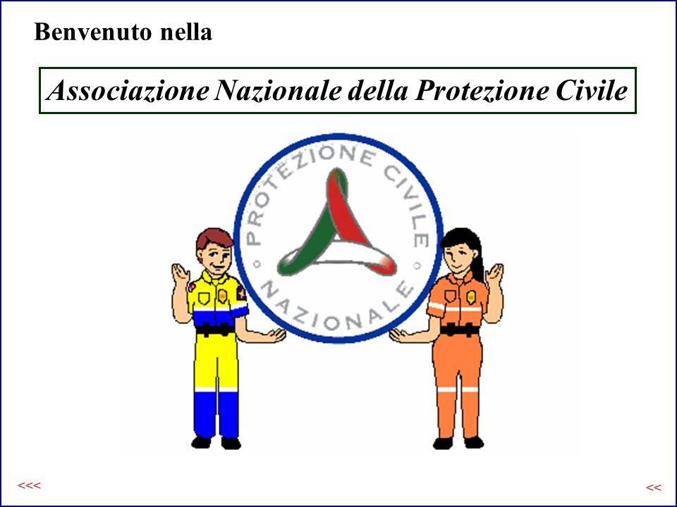 Benvenuto nella Associazione Nazionale della Protezione Civile <<< <<