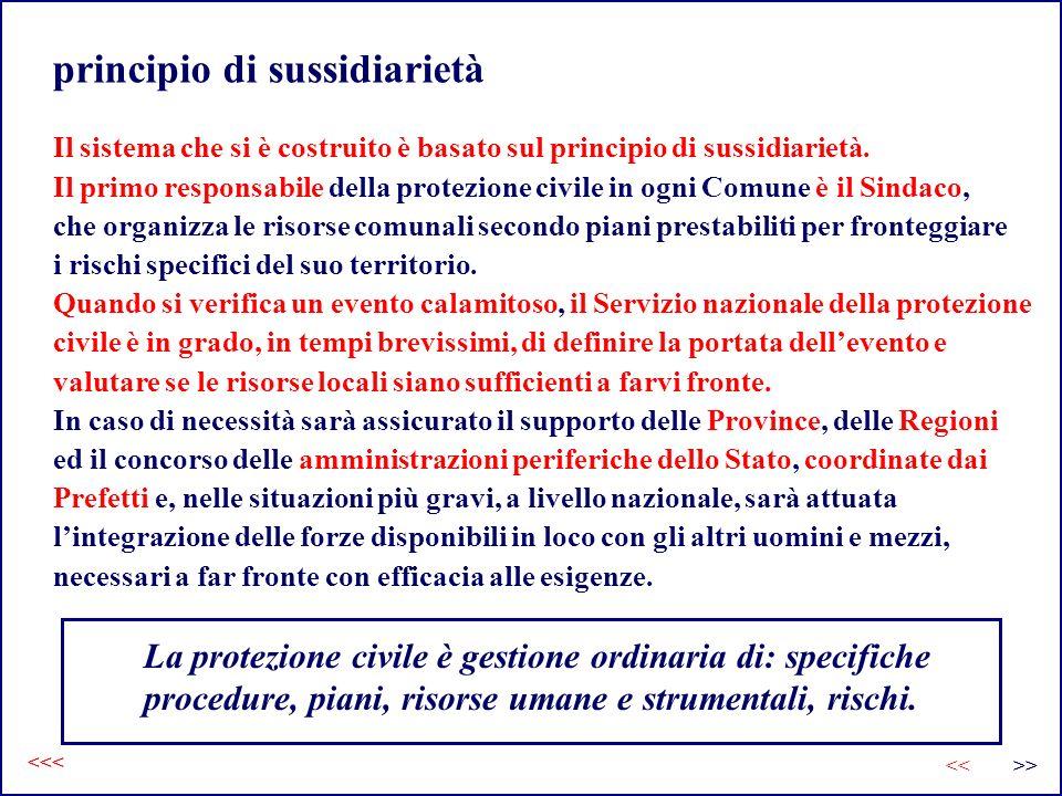 principio di sussidiarietà Il sistema che si è costruito è basato sul principio di sussidiarietà. Il primo responsabile della protezione civile in ogn