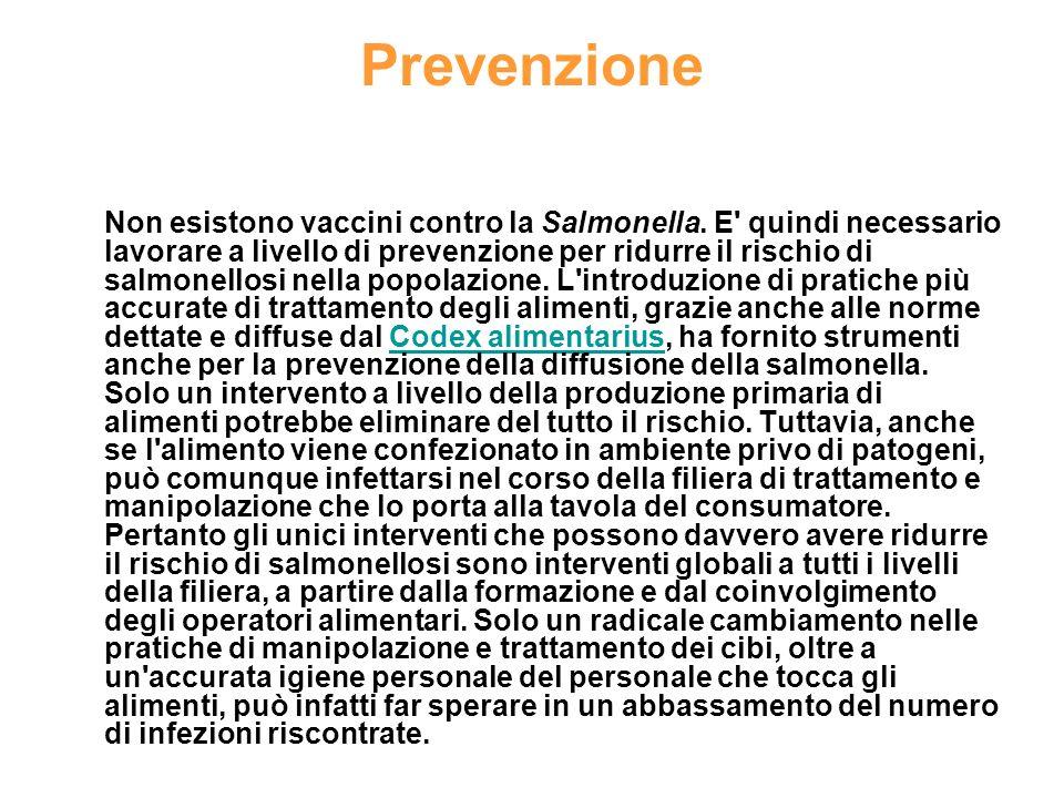 Prevenzione Non esistono vaccini contro la Salmonella.