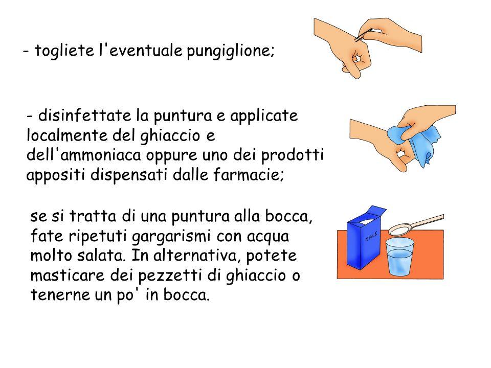- togliete l'eventuale pungiglione; - disinfettate la puntura e applicate localmente del ghiaccio e dell'ammoniaca oppure uno dei prodotti appositi di