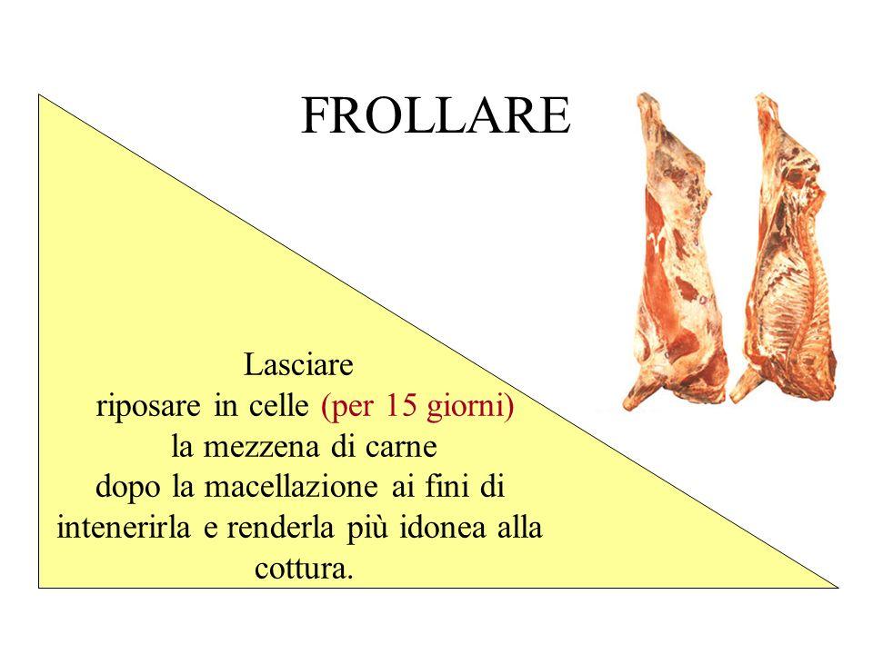 FROLLARE Lasciare riposare in celle (per 15 giorni) la mezzena di carne dopo la macellazione ai fini di intenerirla e renderla più idonea alla cottura