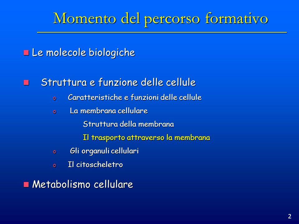 3 Prerequisiti Le molecole biologiche Le molecole biologiche Carboidrati, lipidi, fosfolipidi, glicolipidi, nucleotidi Carboidrati, lipidi, fosfolipidi, glicolipidi, nucleotidi Interazioni con H 2 O Interazioni con H 2 O Nozioni di termodinamica Nozioni di termodinamica Reazioni endo/eso-ergoniche Reazioni endo/eso-ergoniche Spontaneità di una reazione Spontaneità di una reazione Accoppiamento di reazioni (il ruolo dellATP) Accoppiamento di reazioni (il ruolo dellATP) Struttura e la composizione della membrana cellulare Struttura e la composizione della membrana cellulare Il doppio strato fosfolipidico Il doppio strato fosfolipidico Il modello a mosaico fluido Il modello a mosaico fluido Il microscopio Il microscopio