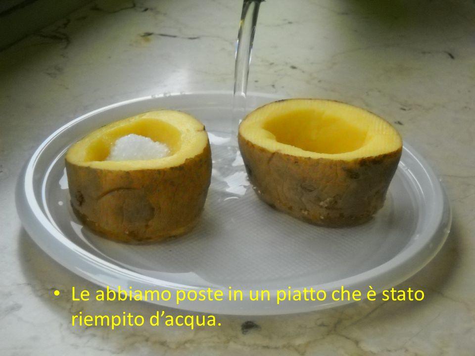 Le abbiamo poste in un piatto che è stato riempito dacqua.